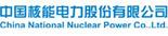 中国核能电脑股份